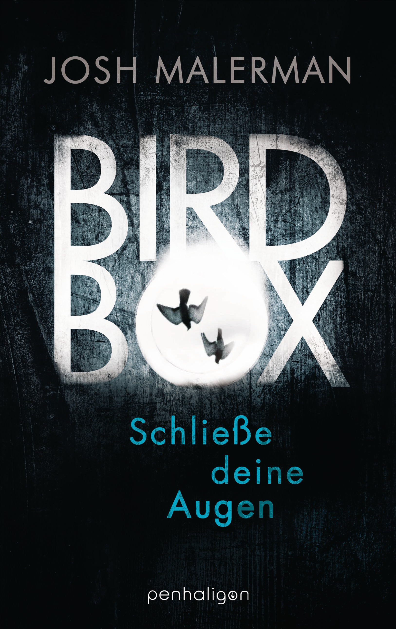 JessiBuechersuchti: Rezension Josh Malerman - Bird Box ...