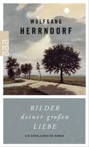 Bilder-deiner-großen-Liebe-Ein-unvollendeter-Roman-Wolfgang-Herrndorf-rororo-Cover
