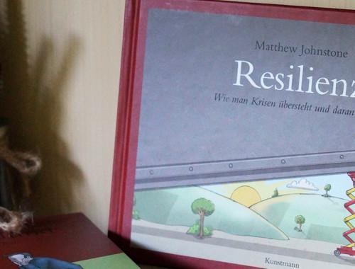 Resilienz-MatthewJohnstone-Beitragsbild