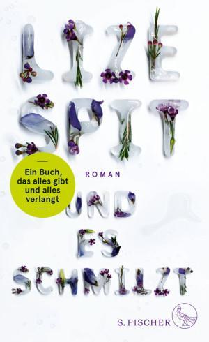 Und es schmilzt Lize Spit Cover S. Fischer Verlag