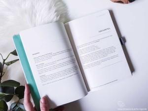 Klarheit Buch Coaching Teil Einleitung mit Stiftlasche